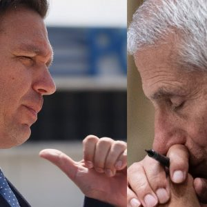 'Flat-Out Disgusting': DeSantis Tears Into Fauci Over Experiments On Dogs