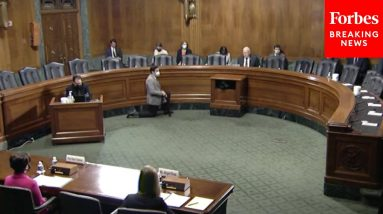 Senate Judiciary Committee Holds Hearing On Patents